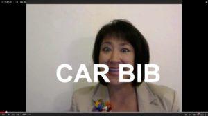 Car Bibs