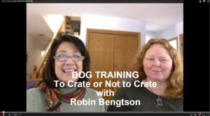 Dog Training: To Crate or Not to Crate